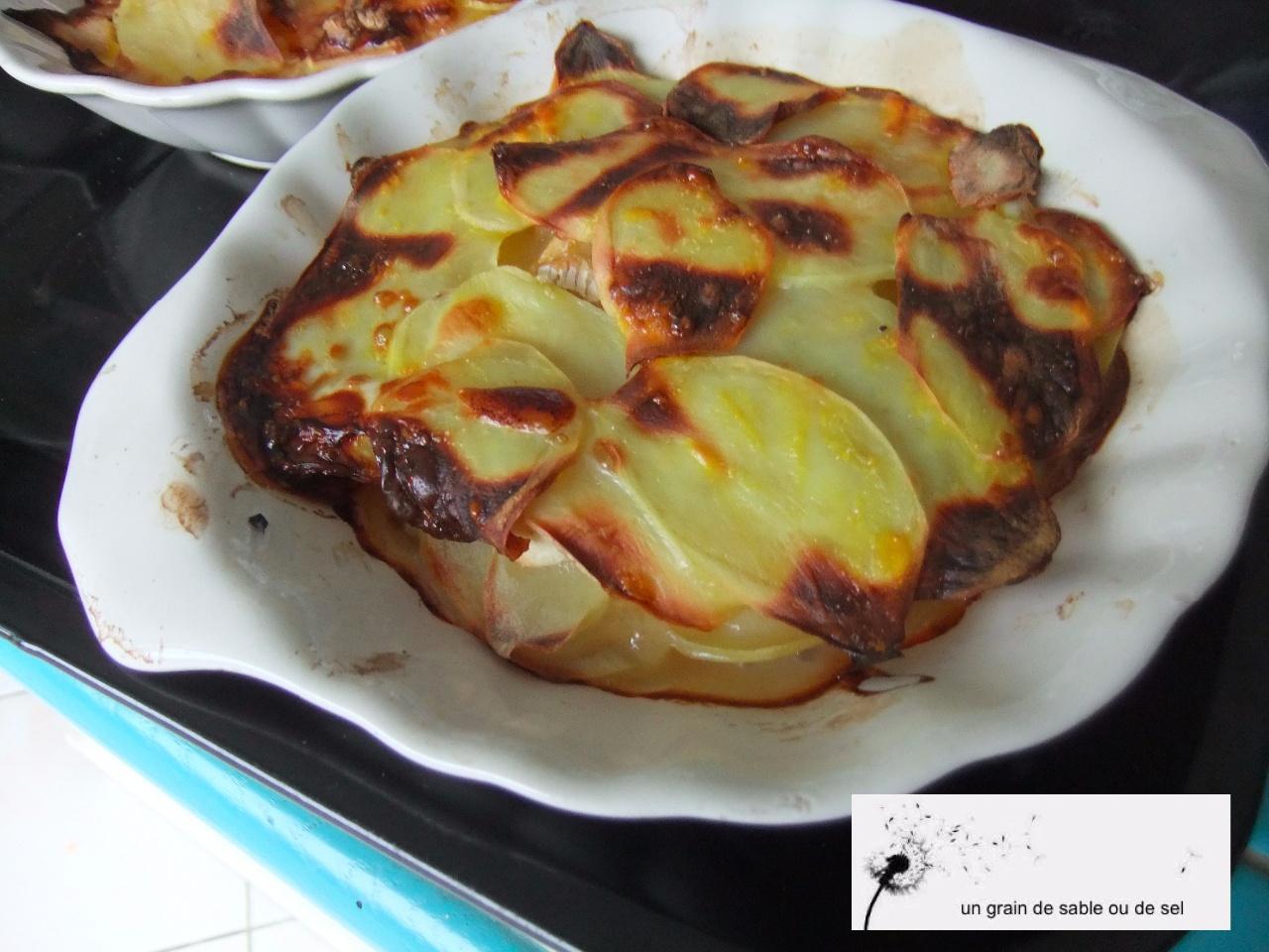 gratin-aux-2-pommes-camembert